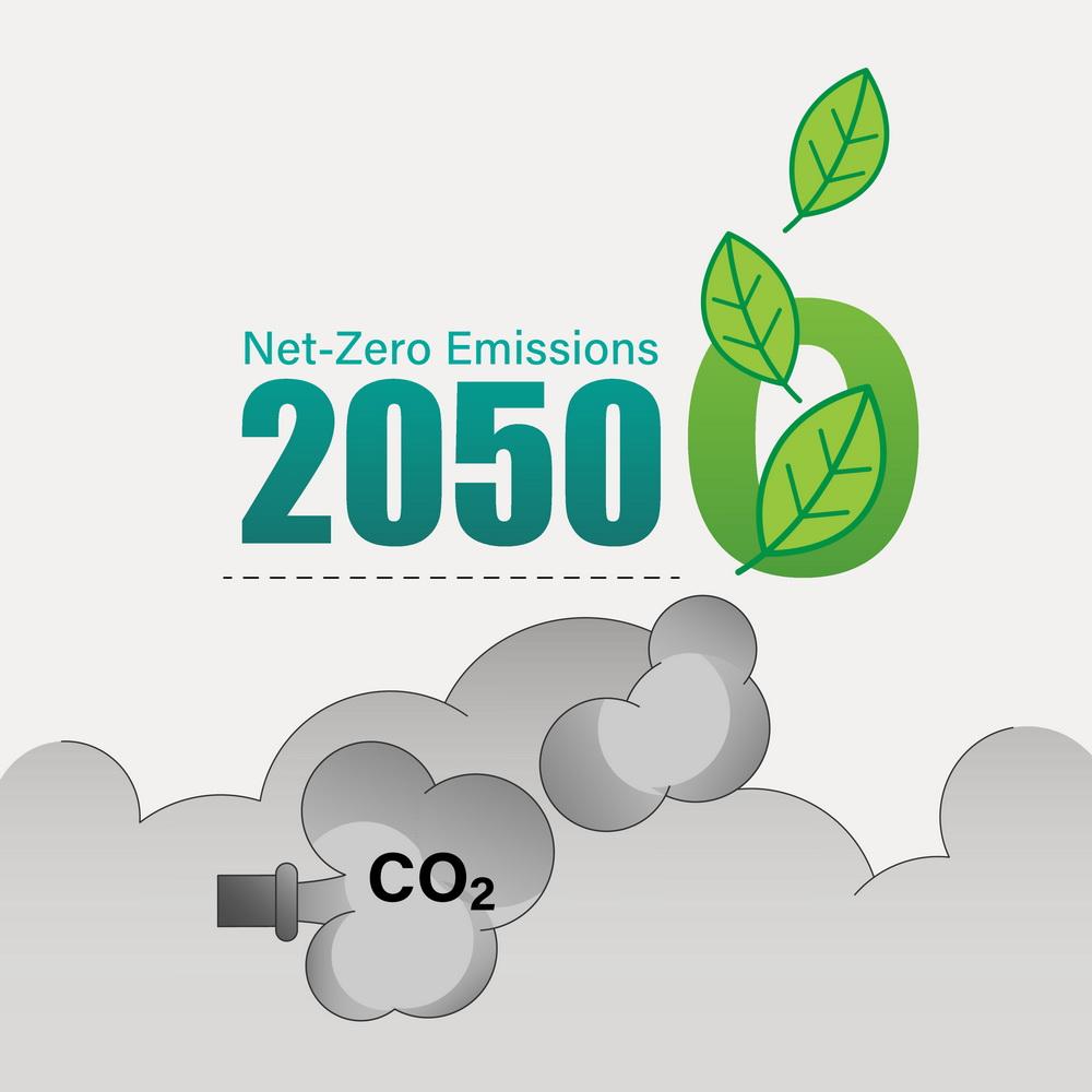 Carbon Net Zero 2050